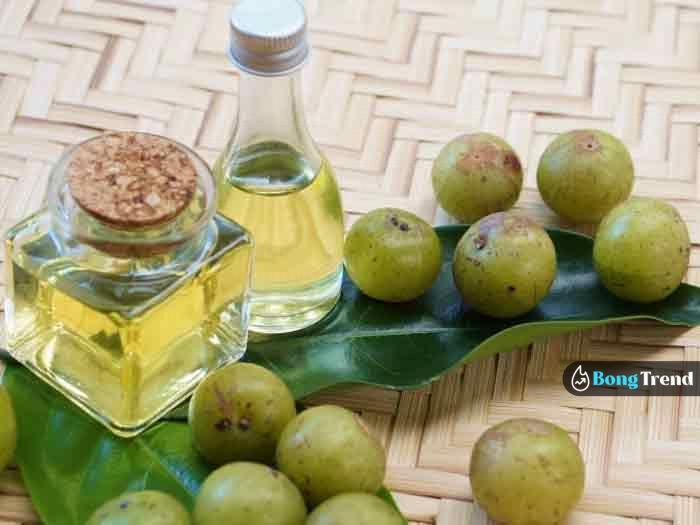 Aamla Oil আমলা তেল