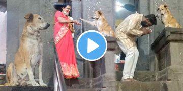 Dog giving blessing Viral VIdeo ভাইরাল ভিডিও