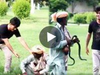 ভাইরাল ভিডিও Viral Video