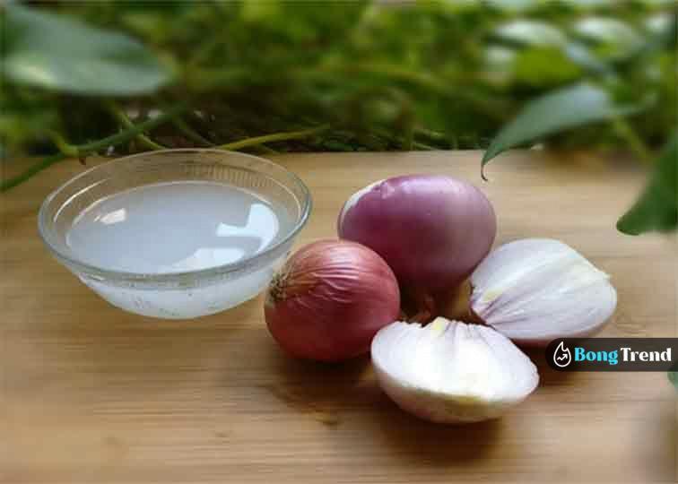 Onion Juice পিয়াজের রস