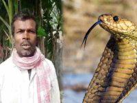 Cobra bites a man 72 times