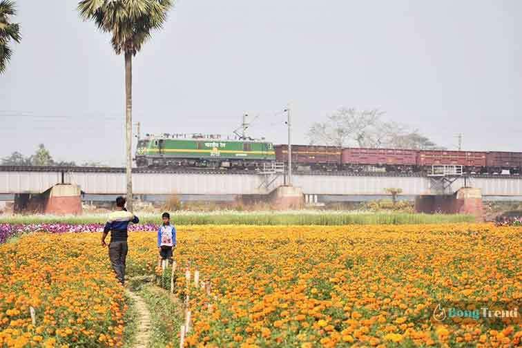 Khirai Flower Valley of West Bengalক্ষীরাই