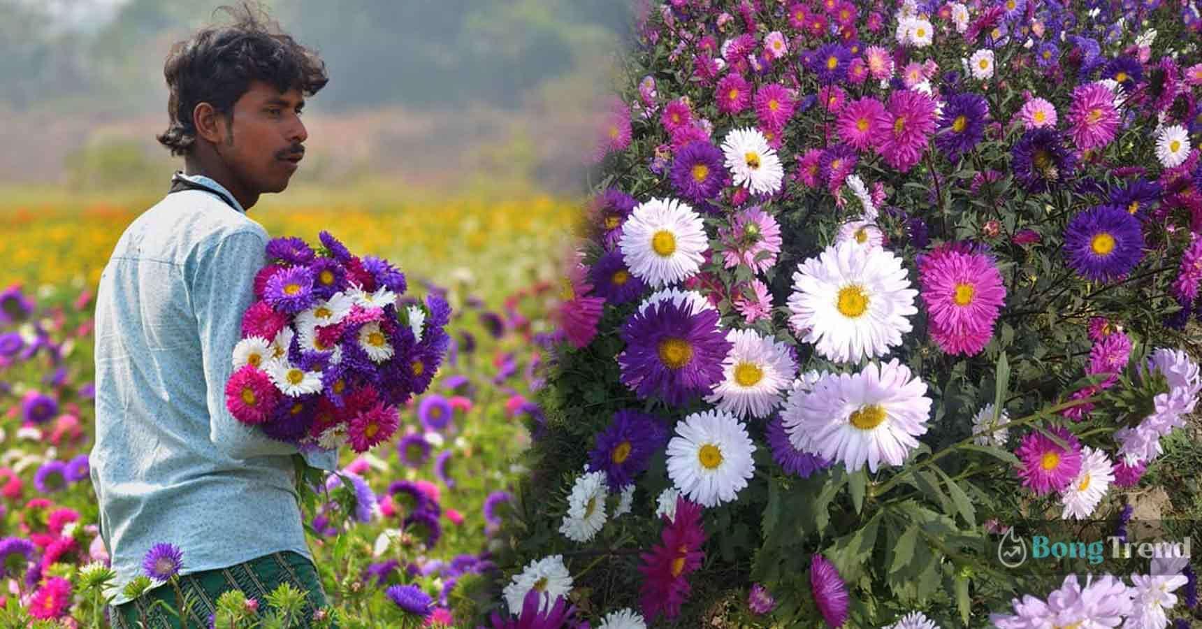 Photo of ফুলের দেশে হারিয়ে যেতে চান! তাহলে অবশ্যই ঘুরে আসুন পশ্চিমবঙ্গের ভূস্বর্গ ক্ষীরাই