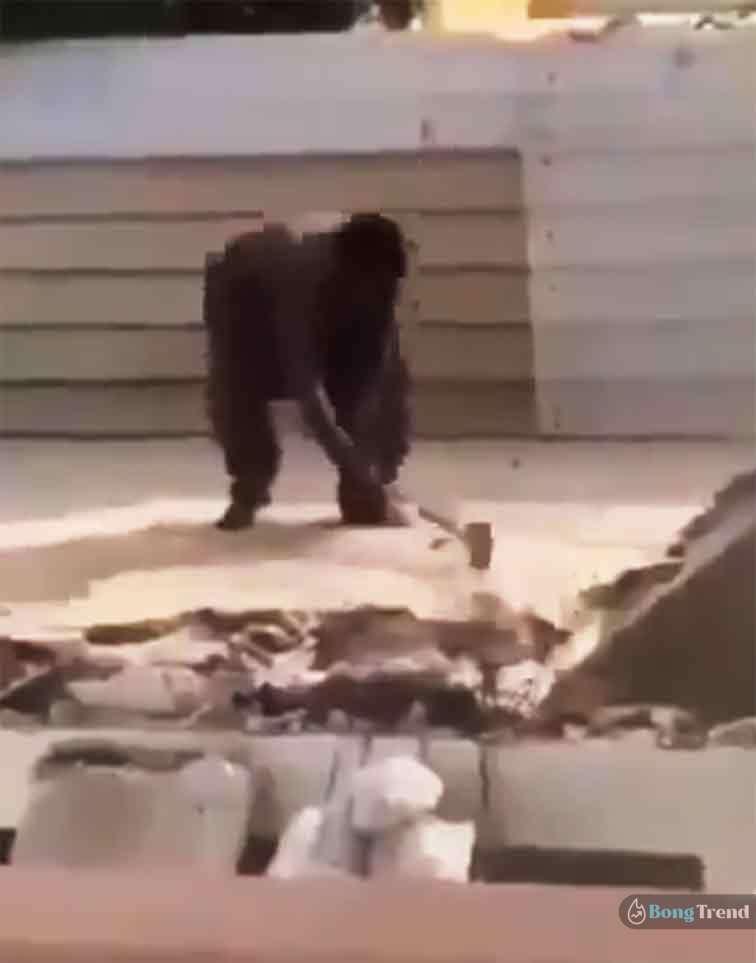 ভাইরাল ভিডিও Viral Video Man falls from roof while hammering