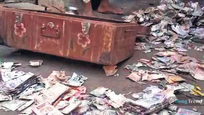 Money Eaten by Termites Andhrapradesh Incedent