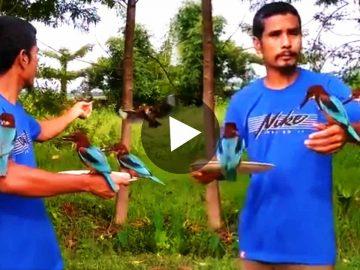 Viral Video Man Feeding Birds