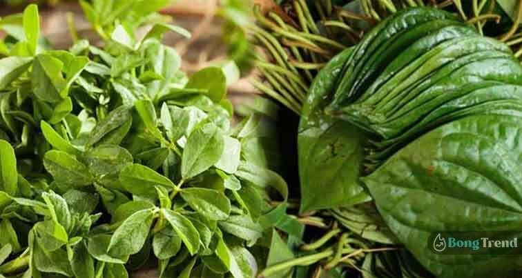 Paan Leaf Methi Shaag